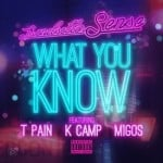DJ Sense – What You Know (feat. T-Pain, K Camp & Migos) (2014)