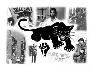 image-black panthrers-logo-biographie