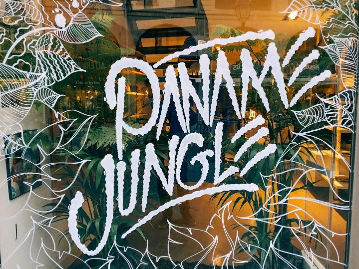 image wrung paname jungle