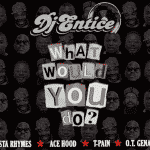 DJ Entice « What would You Do ? » Ft Busta Rhymes, Ace Hood, O.T Genasis, T-Pain