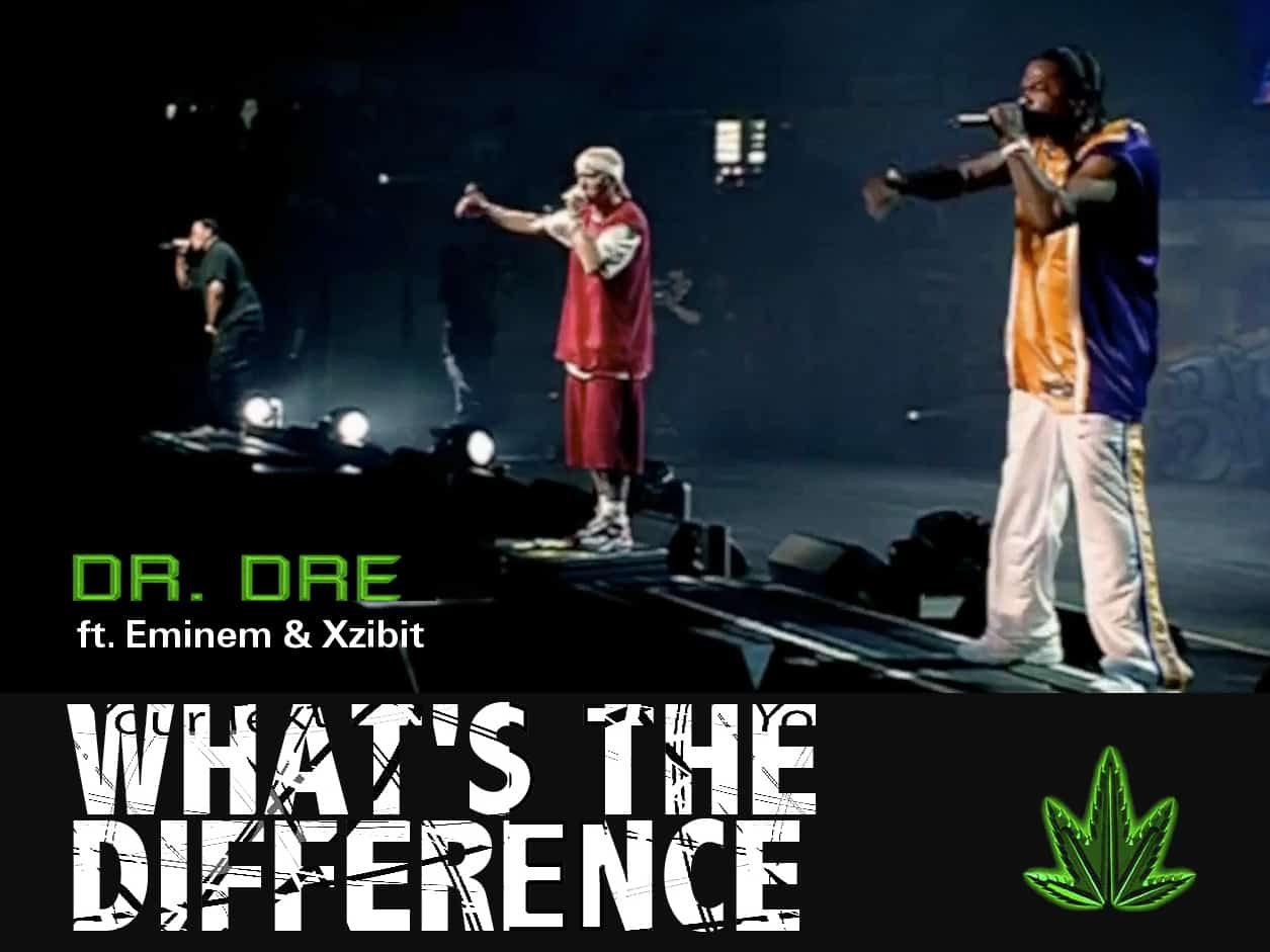 image Dr Dre Eminem & Xzibit live What's The Difference