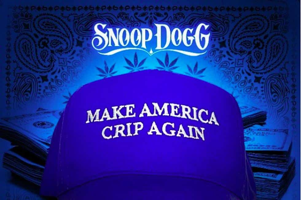 image snoop dogg make america crip again
