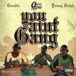 """Young Dolph et Trouble en feu sur """"You Ain't gang"""""""