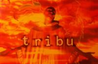image-tribu-album
