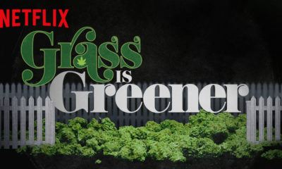 image affiche grass is greener netflix