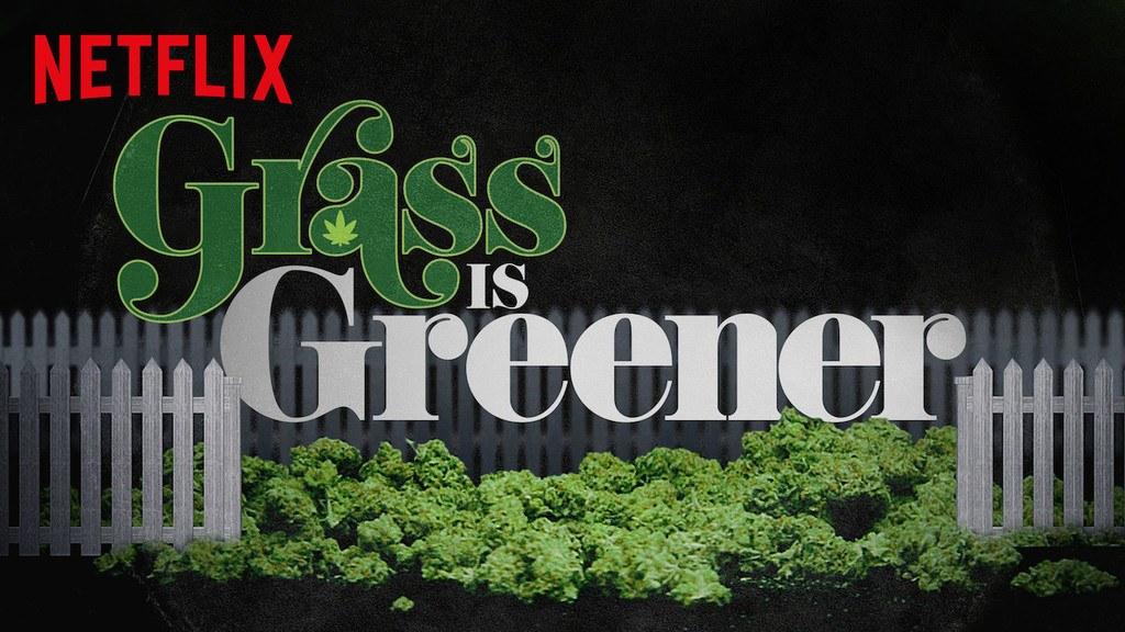 image affiche grass is greener netflix