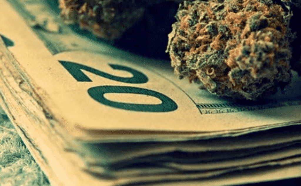 image cannabis argent documentaire cannabiz