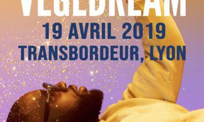 image vegedream concert transbordeur avril 2019