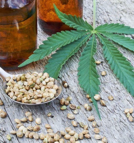 image-cbd-sense-cannabis