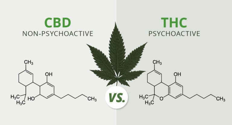 image-cannabis-cbd-vs-thc