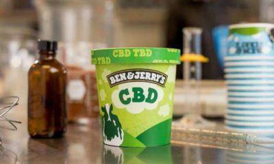 Ben & Jerry's va lancer une crème glacée infusée au CBD