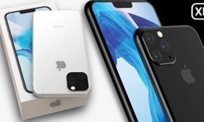 image-iphone-11