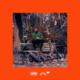 image-dinos-taciturne-cover-2019
