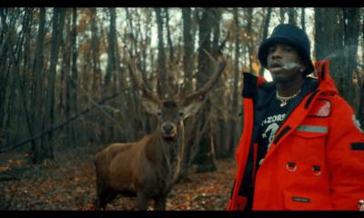 image-josman-clip-bambi