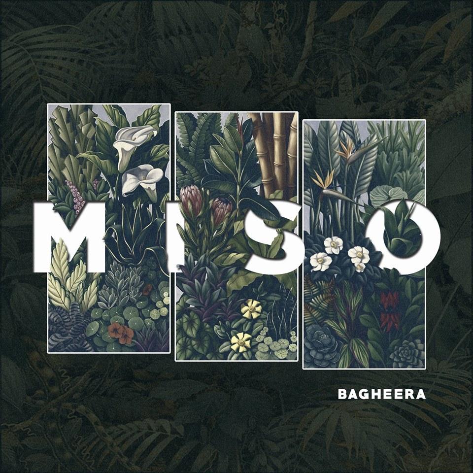image-bagheera-album-miso