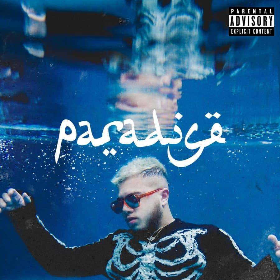 image hamza paradise cover album