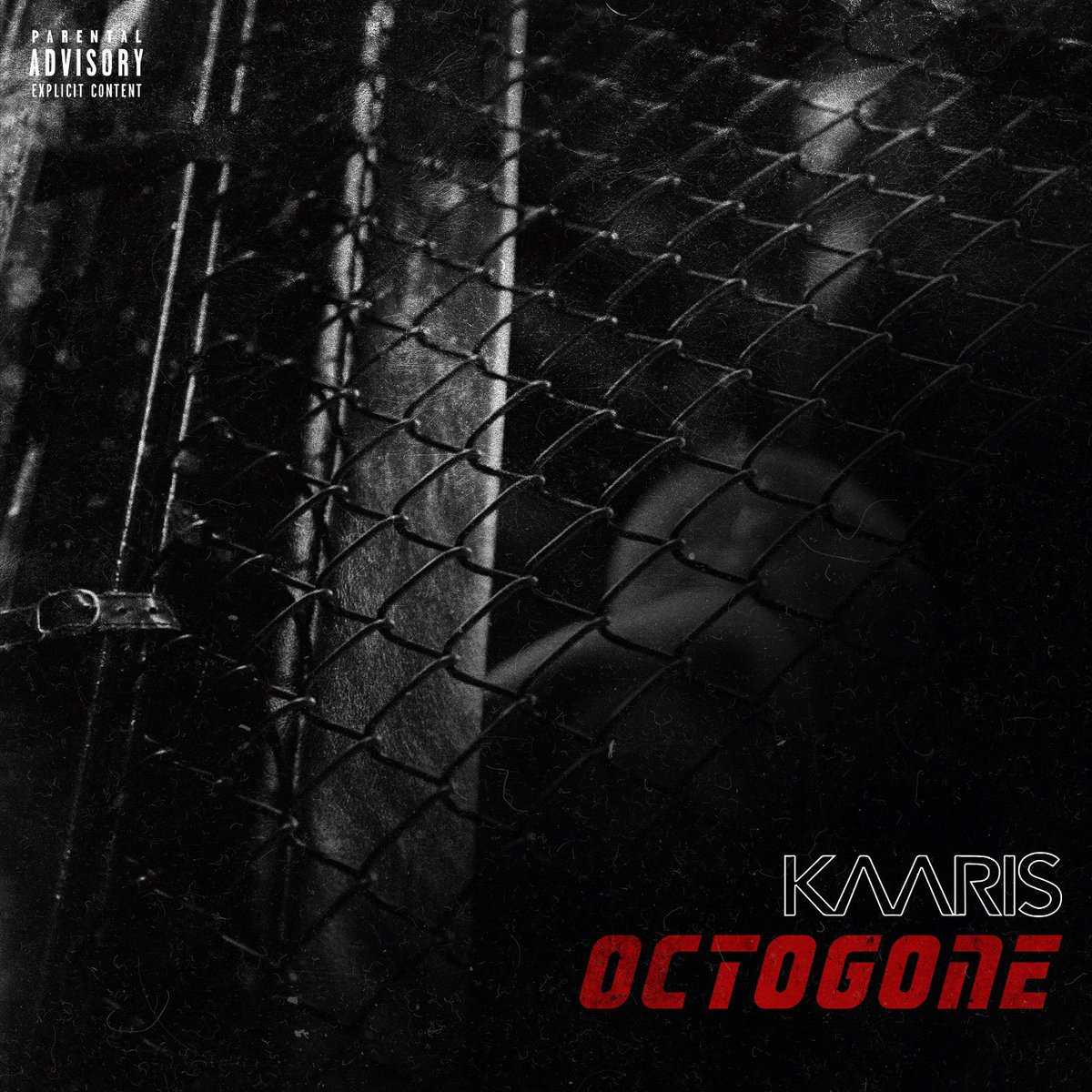 image kaaris octogone son